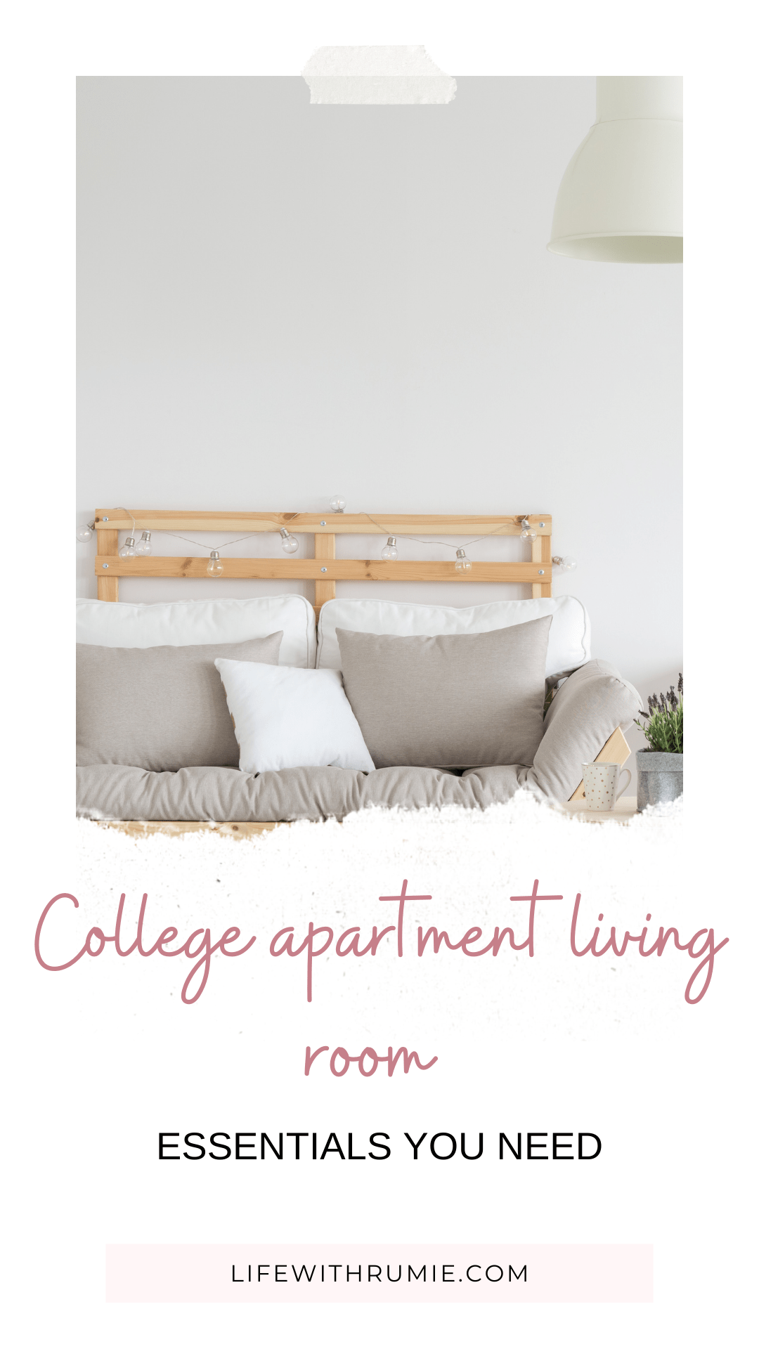 college aprtment living room