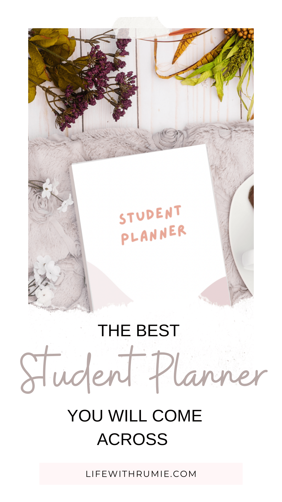 the best planner for college students
